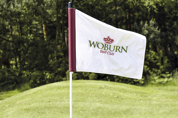 Woburn flies its �flash� new flag