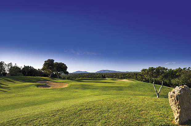Golf citrus Hammamet the first 45-hole complex in tunisia